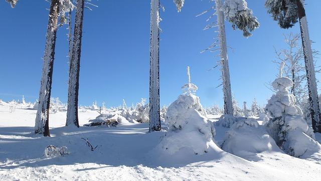 sníh na horách