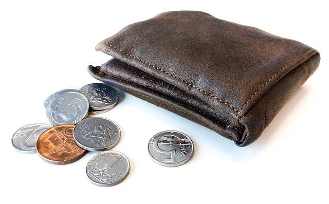 drobné u peněženky