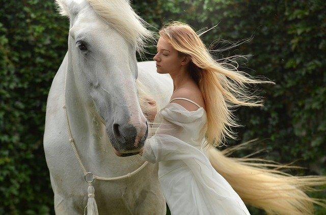kůň a dívka